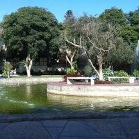 Foto tomada en Bosque El Olivar por Amy Leon el 3/30/2012