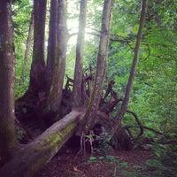 Das Foto wurde bei Seward Park von must I. am 7/23/2012 aufgenommen