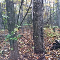 Photo taken at Cross Country by Bronwyne S. on 10/17/2011
