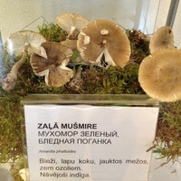 Photo taken at Latvijas dabas muzejs | Latvian Museum Of Natural History by Jānis B. on 9/13/2012