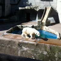 Photo taken at Erie Zoo by Andrew H. on 8/25/2011
