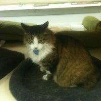 Photo taken at Pet Food Center by Erika H. on 6/12/2012