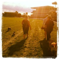 Photo taken at Caulfield Racecourse by Kate E. on 2/20/2012