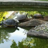 Photo taken at Botanischer Garten by Bàrbara F. on 6/15/2012
