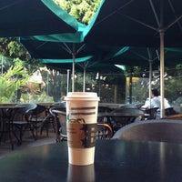 Photo taken at Starbucks by Federico M. on 4/4/2012