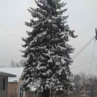 Photo taken at Snowpocalypse 2012 by CAT C. on 2/14/2012