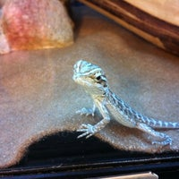 Photo taken at PetSmart by Rob T. on 2/20/2012