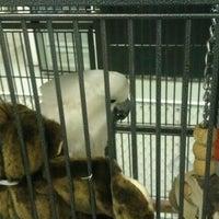 Photo taken at Pet Food Center by John T. on 10/6/2011