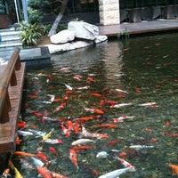 Photo taken at 华尔登国际酒店 by Titan Dive Team 周. on 2/24/2011