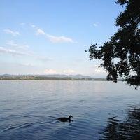 Photo taken at Naturschutzgebiet Unterer Greifensee by Matthias on 8/10/2012