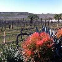 Photo taken at Doffo Winery by José C. on 3/9/2012