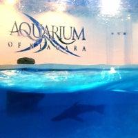 Photo taken at Aquarium of Niagara by Miss 💎 C. on 8/10/2012