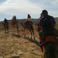 Photo taken at Riding A Camel by Sun G. on 10/17/2011