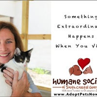 Photo taken at Humane Society of South Coastal GA by Leigh Anne E. on 1/10/2012