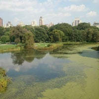 Photo taken at Central Park – Turtle Pond by Lisa P. on 9/12/2011
