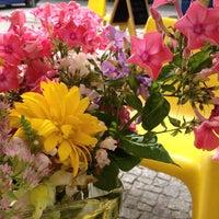 Das Foto wurde bei Rosa Canina von Torsten B. am 9/2/2012 aufgenommen