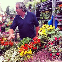 Photo taken at Columbia Road Flower Market by Sophie R. on 8/26/2012