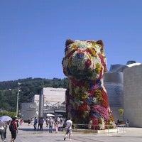 7/24/2012에 Gorka R.님이 Puppy (Guggenheim)에서 찍은 사진