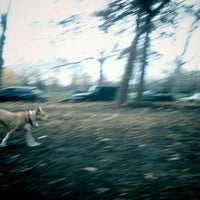 Photo taken at McCarren Dog Park by Ned R. on 11/29/2011