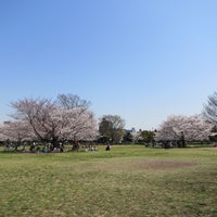 Photo taken at Kiba Park by motohide on 4/9/2012