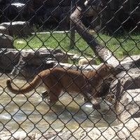 Photo taken at Orange County Zoo by Ella H. on 4/28/2012