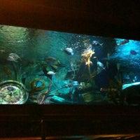 Photo taken at Dive Bar by Eddie M. on 6/26/2012