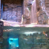 Photo taken at Bass Pro Shops by Thomas T. on 6/4/2011