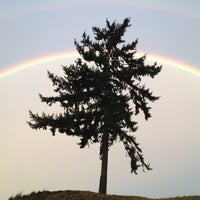 Photo taken at Chambers Bay Golf Course by Ryan Y. on 1/4/2012
