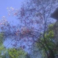 Photo taken at Parcul Romniceanu by Madalina R. on 4/16/2012