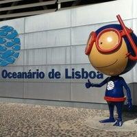 Photo taken at Oceanário de Lisboa by Andrea M. on 6/29/2012