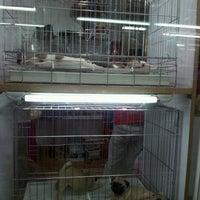 Photo taken at @Zoo จตุจักร by °`Ann.nẻmo M. on 4/1/2012