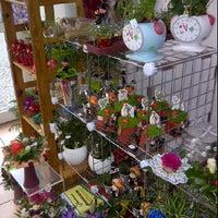 Photo taken at Blumenladen by Tina on 12/31/2011