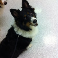 Photo taken at Kutters Vet Clinic by Ashley E. on 11/2/2011