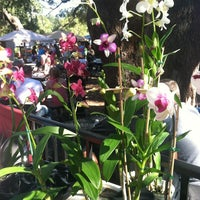 Photo taken at Orlando Farmer's Market by Taylor D. on 1/8/2012