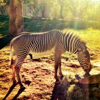 Photo taken at Phoenix Zoo by Daniel S. on 11/26/2011