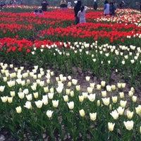 Photo taken at 国営越後丘陵公園 by Hide K. on 5/4/2011