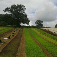 Photo taken at Riverford Organic Vegetables by Boldizsár H. on 7/21/2012