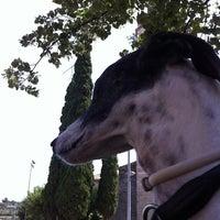 Photo taken at Monestir de Sant Esteve by erreqerre on 7/16/2012