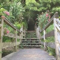Das Foto wurde bei Filbert Steps von Winnie Y. am 6/5/2012 aufgenommen
