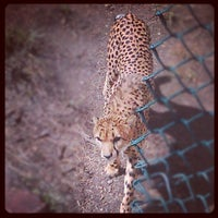Foto tomada en Denver Zoo  por Hunter H. el 9/13/2012
