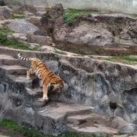 Photo taken at Tennoji Zoo by Yasushi N. on 2/26/2012