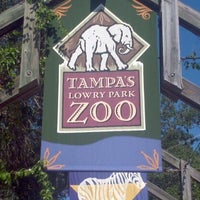 Photo taken at Tampa's Lowry Park Zoo by Andrew K. on 10/1/2011
