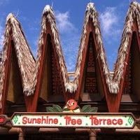 Photo taken at Sunshine Tree Terrace by Reedy Creek Radio.Com T. on 5/26/2012