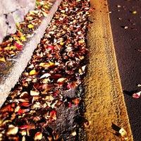Photo taken at 駒沢公園東口 by monospoon on 11/25/2011