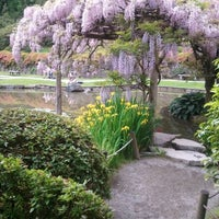 Photo taken at Seattle Japanese Garden by Teddy Miao S. on 8/30/2011