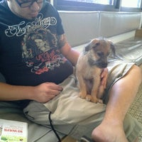 Photo taken at Sahara Pines Animal Hospital by Carin T. on 8/30/2012