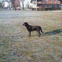 Photo taken at Velika livada za pse by Mario P. on 1/21/2012