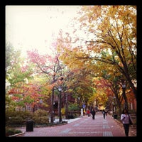Photo taken at Locust Walk by Lori W. on 11/6/2011