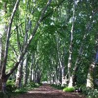 Photo taken at National Botanical Gardens by Matt on 10/23/2011