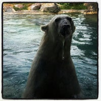 Photo taken at Rocky Shores at Hogle Zoo by Jeremy W. on 7/15/2012